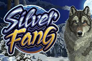 Виртуальный слот Silver Fang от Microgaming
